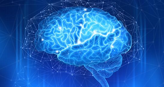 Pós-graduação em Neurociência
