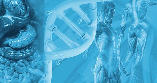 Medicina Ômica: Metabolômica e Microbioma